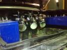 Darryls Black 64 /3Pump